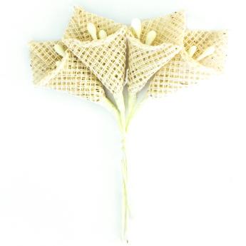 riidest lill