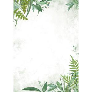 disainpaber flora